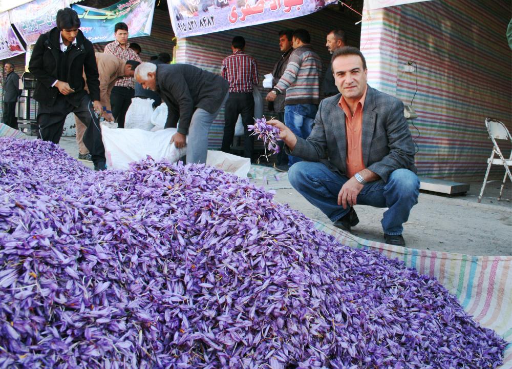 Saffron wholesalers